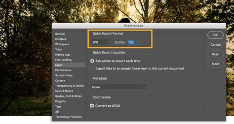 tutorial photoshop for beginner photoshop for beginners adobe photoshop cc tutorials