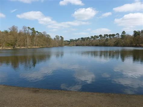 Black Park (Slough, England): Top Tips Before You Go (with Photos)   TripAdvisor