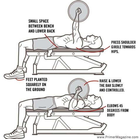 correct form for bench press 8 common errors in 8 common exercises primer
