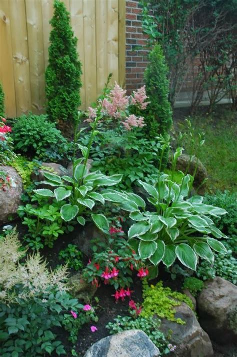 Small Shade Garden Ideas I The Look Of This Small Shade Garden Astilbes Fuchsias Hostas Creeping