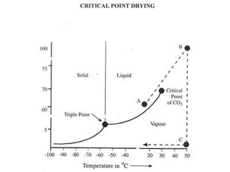 critical point phase diagram definition critical point drier