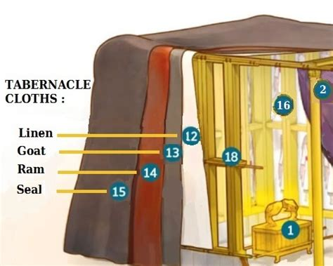 tabernacle curtains the tabernacle instructions jwitness forum home page