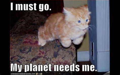 Lol Funny Meme - funny dancing cats memes