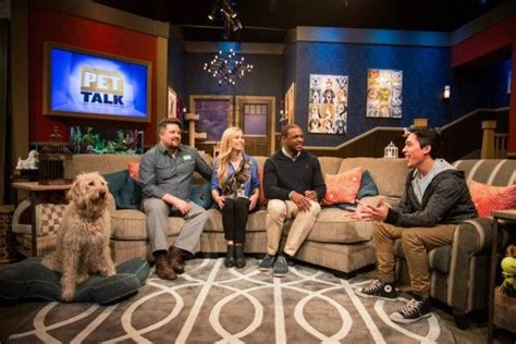 how to use whisperer lead 25 best ideas about andre millan on cesar millan cesar millan and