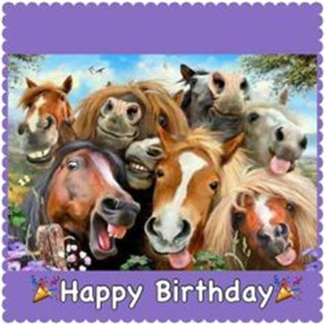 Horse Birthday Meme - happy birthday horse pinteres