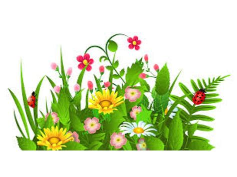 flower garden party clipart finders