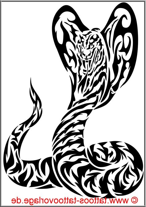 tribal snake tattoo meaning meaning of a snake images for tatouage