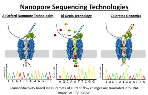 illumina next generation sequencing next generation sequencing technologies