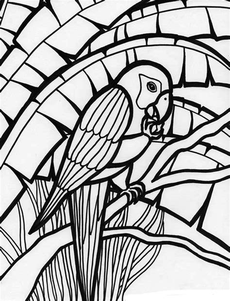 amazing parrot coloring page  print