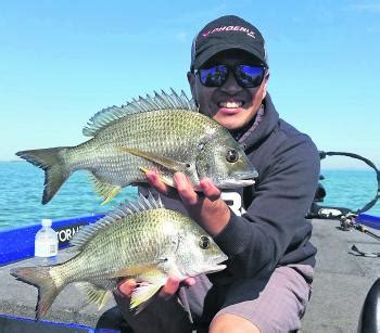 small boat safety requirements qld fishing monthly magazines i m breaming of a whiting