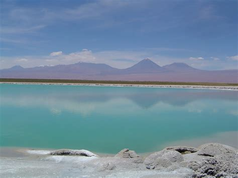 Sink Holr by Panoramio Photo Of Trumao En Laguna Cejar Toconao Chile