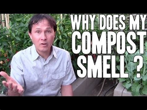 why does my compost smell more gardening questions