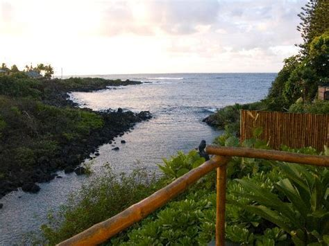 monday sunrise turtle cove cottage picture of