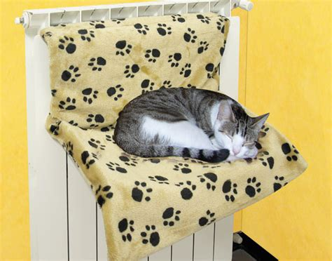 amaca gatti amaca per gatti da radiatore tutto a 5 dmail
