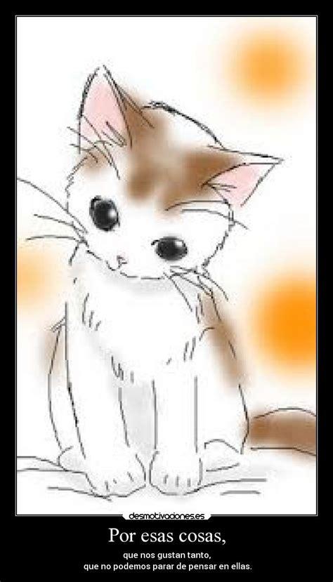 imagenes de gatos anime kawaii por esas cosas desmotivaciones