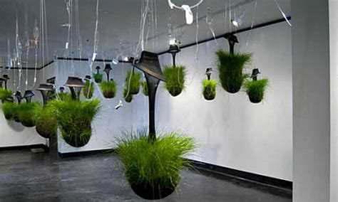 hang art hanging gardens kept alive by iv drips inhabitat