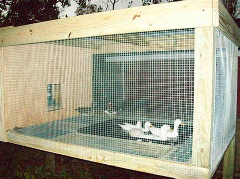 duck housing plans backyard duck house plans outdoor furniture design and ideas
