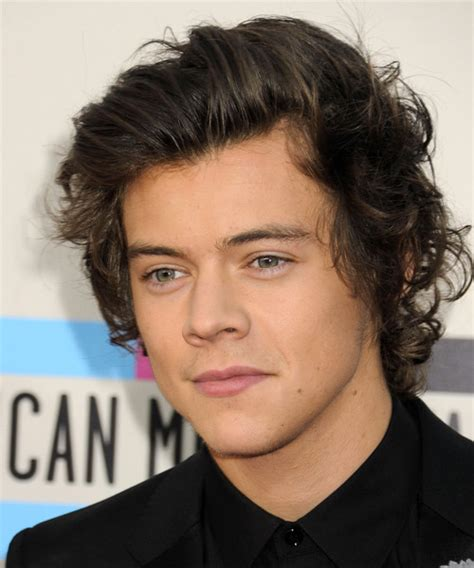 Harry Styles Hairstyle 2014 by Harry Styles Hairstyles In 2018