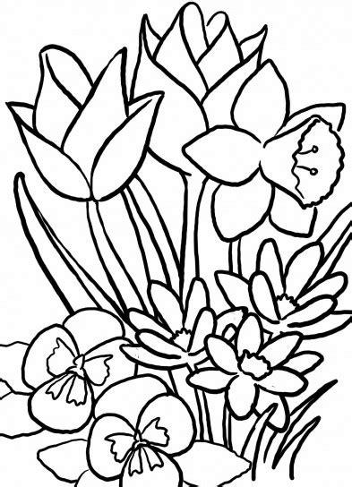 fiori da colorare primavera disegno di fiori di primavera da colorare quotes