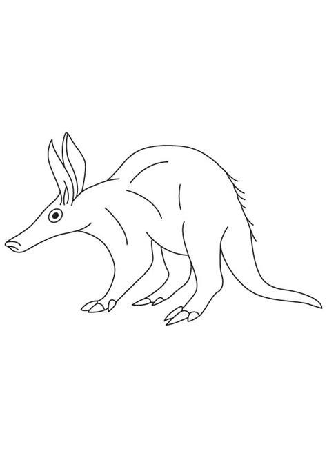 aardvark coloring sheet   aardvark coloring