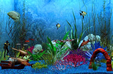 fondo acuario marino