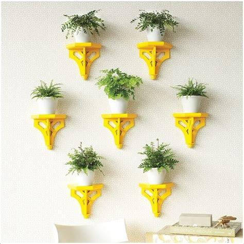 indoor plant display 15 amazing ideas to display your indoor plants