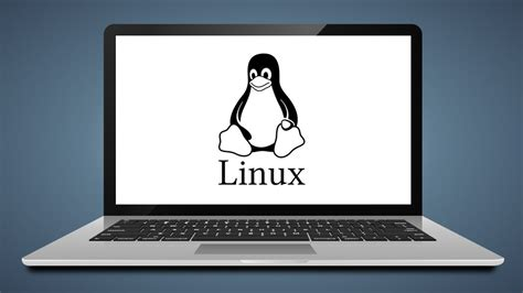 best linux laptops top 10 best linux laptops of 2017 finding the perfect
