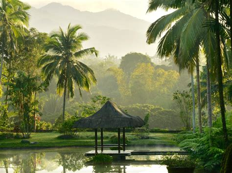 Cheap Detox Retreats Asia by 10 Top Spas Wellness Destinations In Asia Barefoot