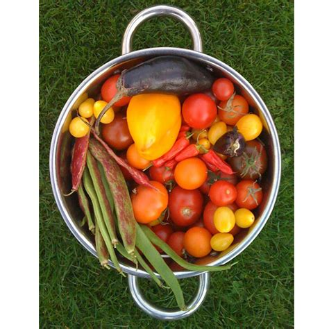 Grow Bags For Vegetables Pictures To Pin On Pinterest Bag Gardening Vegetables