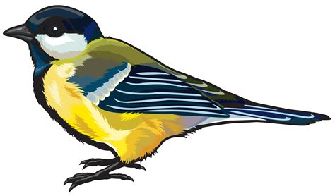 free clipart images clipart bird png clipground