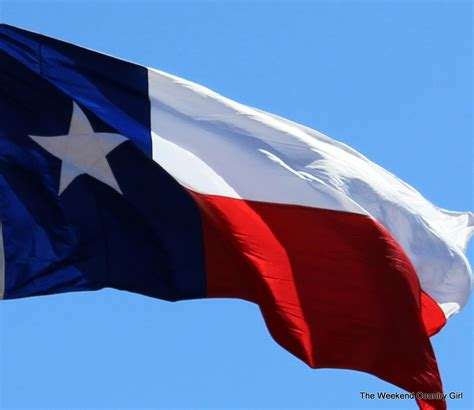 Flower Of Texas State - texas flag the weekend country