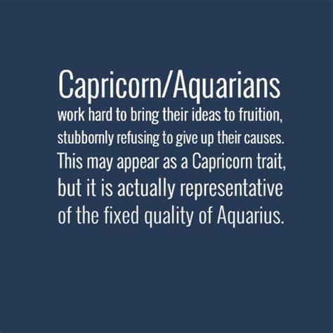 best 10 capricorn aquarius cusp ideas on pinterest