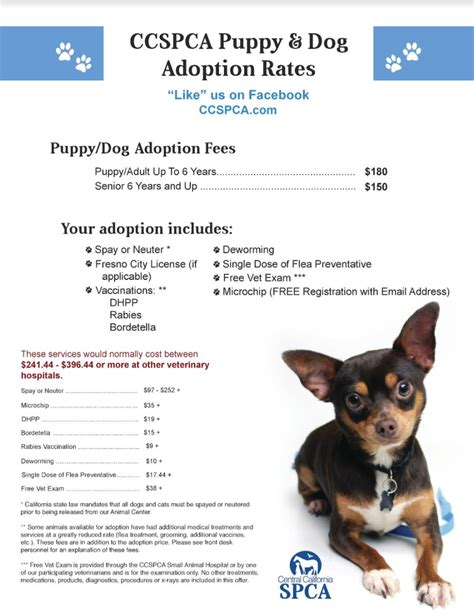 free puppies fresno ca adoption rates central california spca fresno ca