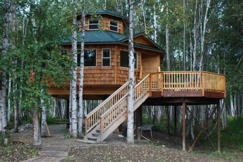 treehouse living cabin living in alaska studio design gallery best