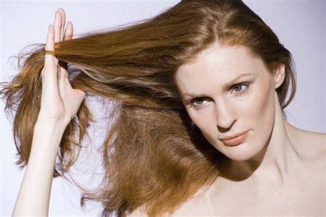 apfelessig schuppen haarkur selber machen die besten rezepte f 252 r gesunde haare