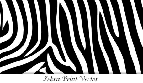 16 vector animal print images animal print vector estado de cebra im 225 genes predise 241 adas clipart me