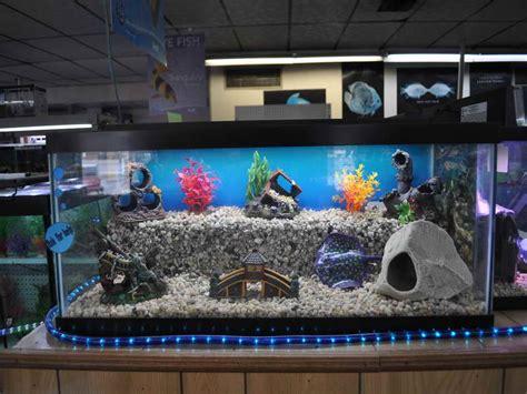 extraordinary home aquarium ideas for your home aquarium decorations decoration designs guide