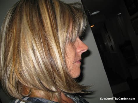 blonde highlights pictures 2011 blonde highlights and lowlights eve out of the garden