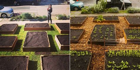Homeowner S Lawn To Garden Transformation Yields More Than Turn Lawn Into Vegetable Garden