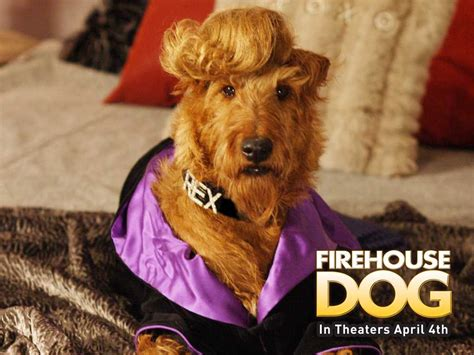 fire house dogs download firehouse dog wallpaper 1024x768 wallpoper 134210
