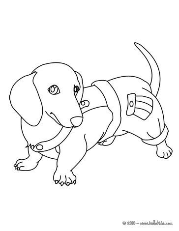 wiener dog coloring page dachshund puppy coloring pages hellokids com