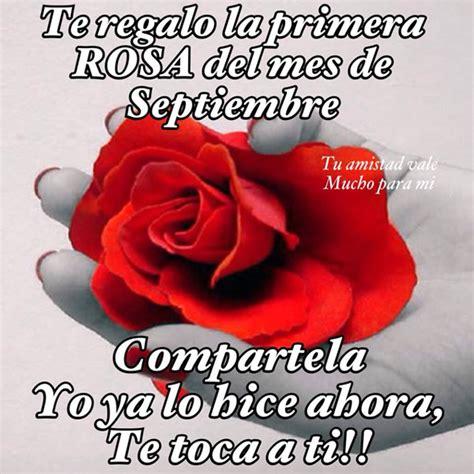 descargar imagenes octubre rosa te regalo la primera rosa del mes de septiembre imagen