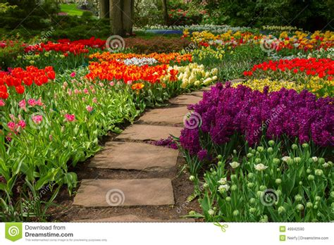 garden flowers a z path winding in a garden stock photo image 49942590