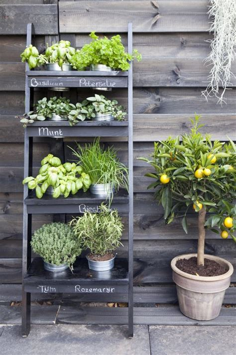 Balcony Herb Garden Ideas 14 Practical Ideas For Creating Functional Balcony Herb Garden