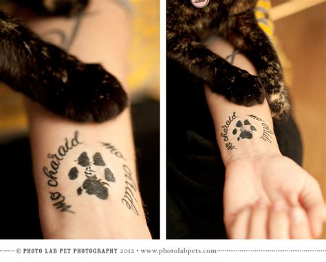 cat memorial tattoo actual paw print tattooed on quot my friend my