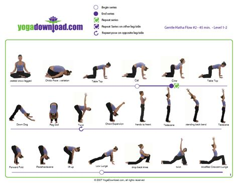 yoga tutorial in pdf how yoga can complement weight training bret contreras