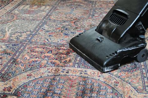 bed bug carpet cleaner how to kill bed bugs in carpet with pictures ehow