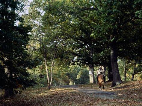 Landscape Arboretum Membership Arnold Arboretum Landscape Management Plan 28 Images