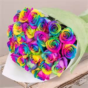 Vase Flower Arrangements 24 Rainbow Roses Flowers Sarah S Flowers Your Friendly