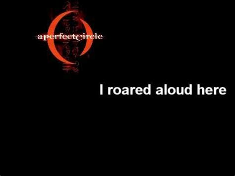 comfortable in my skin lyrics a perfect circle rose with lyrics one of the songs